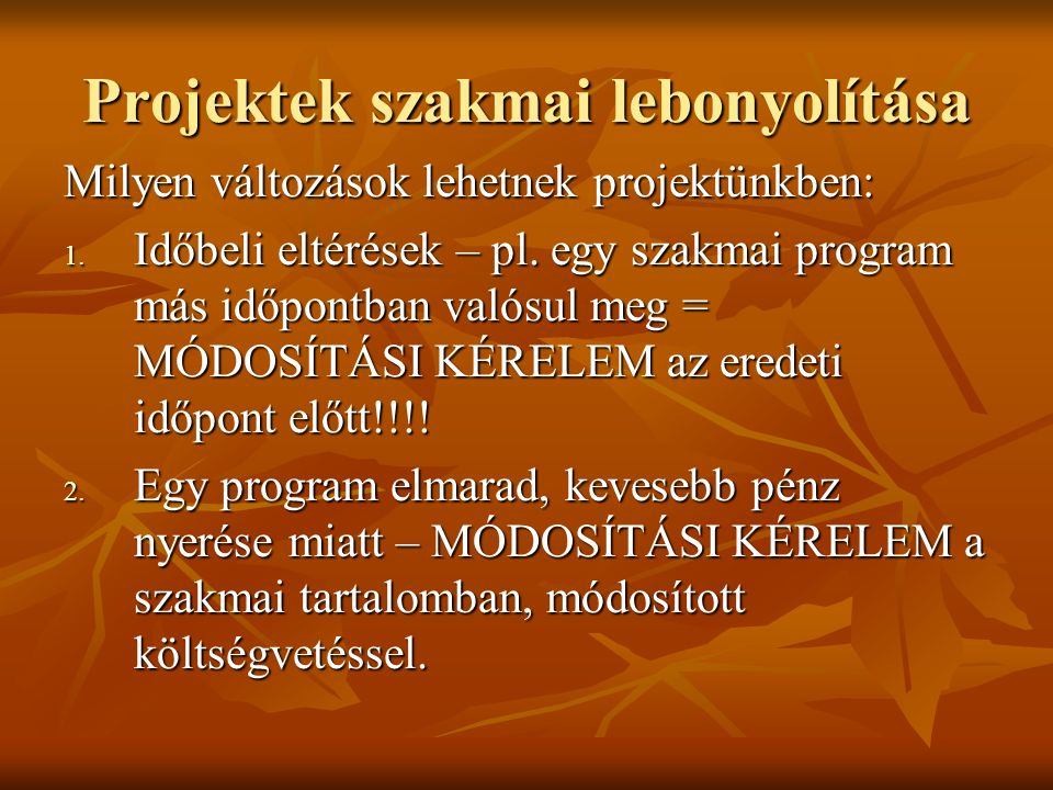 Projektek szakmai lebonyolítása 3.