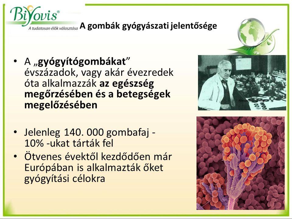 Gyógyhatású gombafajok Megvizsgálva a szükségleteket a következő gyógygombák mellett döntöttünk: Agaricus Blazei Murill – Himematsutake – Mandulagomba Reishi – Gandoderma lucidium – Pecsétviasz gomba Shiitake – Lentinula edodes- Illatos gomba (Lentinán, KS-2) Maitake – Grifola frondosa – Bokrosgomba (Maitake D-frakció)