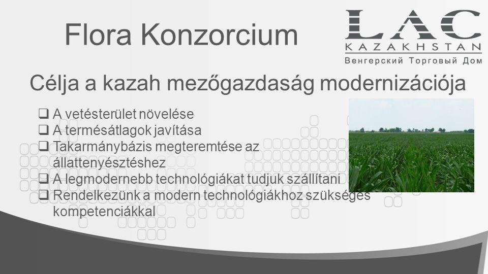 Legfontosabb területek: Flora Konzorcium Kiemelt helyen áll a vetőmag-előállítás, -értékesítés Emellett fontos terület a műtrágya, a növényvédőszer kereskedelem, a mezőgazdasági technológiák gépek, eszközök, gépalkatrészek bevitele, értékesítése és a mezőgazdasági szakmák oktatása