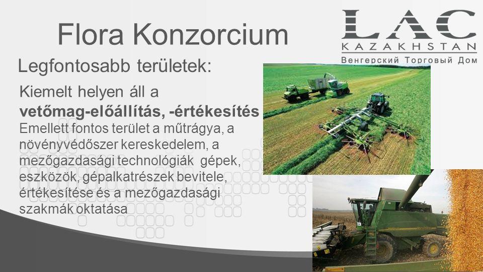 Keremet-Agro  Vegyesvállalat: a mezőgazdasággal és a kereskedelemmel kapcsolatos szolgáltatások nyújtása  6,2 hektárnyi saját terület  szárító - tároló komplexum építése A négy kocka