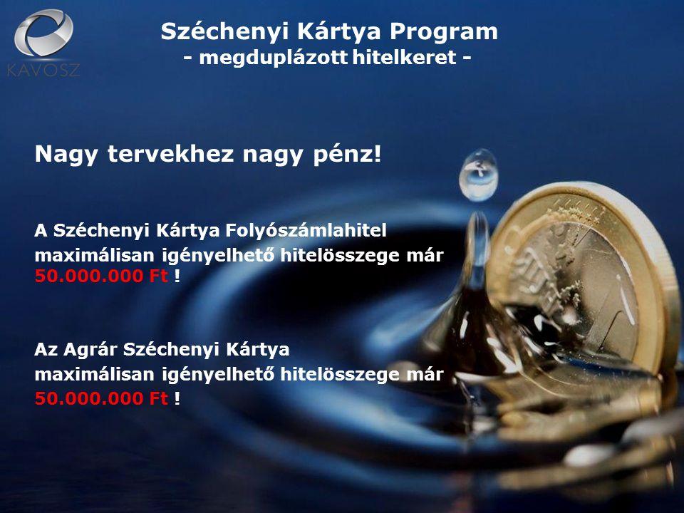 Széchenyi Kártya Folyószámlahitel Működő mikro-, kis- és középvállalkozások részére kialakított, kedvezményes kamatozású, állami kamat- és kezességi díj-támogatásban részesített hitelkonstrukció, amely a legkedvezőbb lehetőség az átmeneti pénzügyi gondok megoldására.
