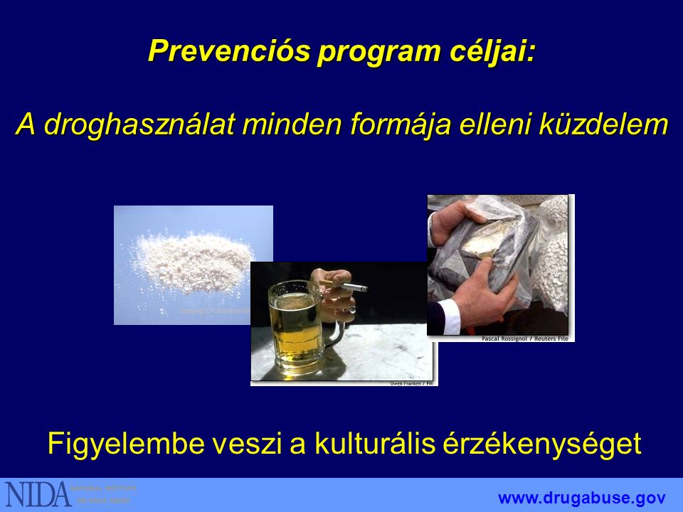 Prevention Programs Should....