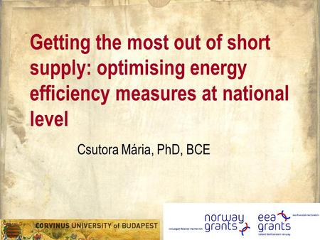 Getting the most out of short supply: optimising energy efficiency measures at national level Csutora Mária, PhD, BCE.