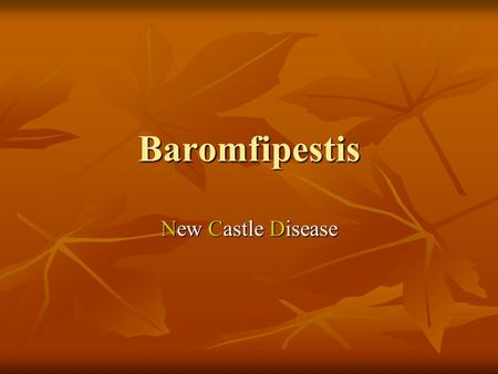 Baromfipestis New Castle Disease.