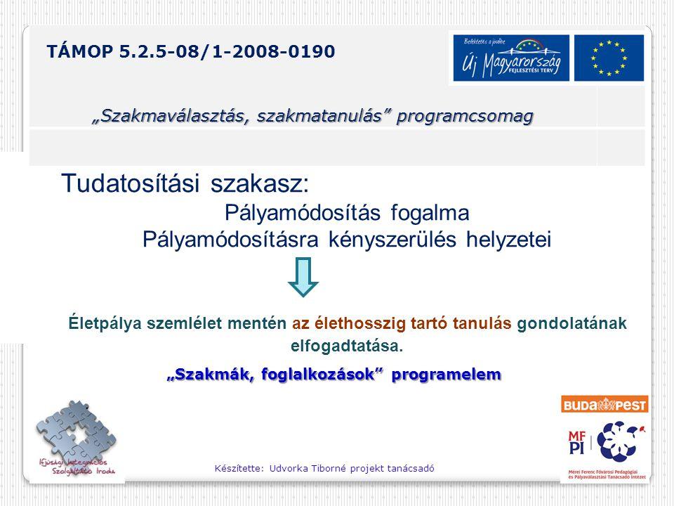 """Készítette: Udvorka Tiborné projekt tanácsadó TÁMOP 5.2.5-08/1-2008-0190 """"Szakmaválasztás, szakmatanulás programcsomag """"Önálló tájékozódás formái programelem •Pályahelyzetek lejátszása párban."""