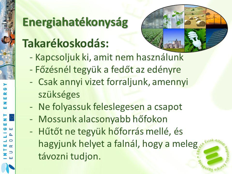 Energiahatékonyság Takarékoskodás: -Ne hagyjuk eljegesedni a hűtőt, mert az több energiát igényel.