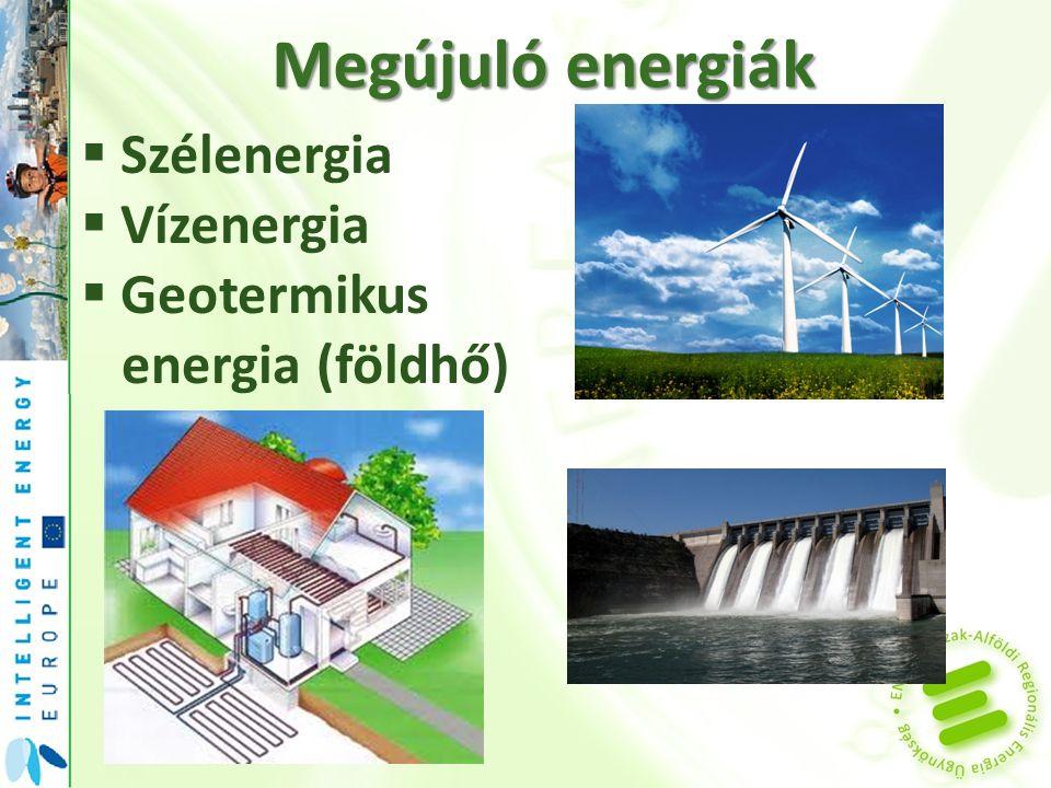 Megújuló energiák  Biomassza -Növények elégetése -Biogáz fejlesztése -Fűtőanyag készítése (pellet, biobrikett, faapríték)