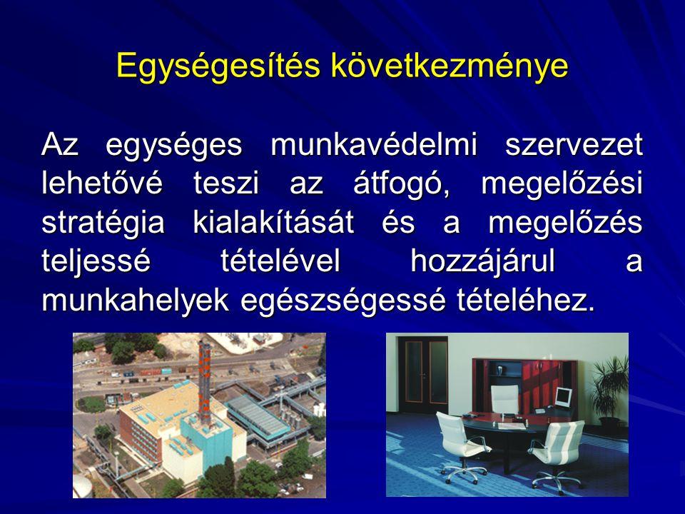A foglalkozás-egészségügy szakmai felügyelete Egészségügyi Minisztérium Szociális és Munkaügyi Minisztérium ÁNTSZ - OSZMKOMMF foglalkozás- egészségügy OMMF Regionális Felügyelőségek Munkáltatók
