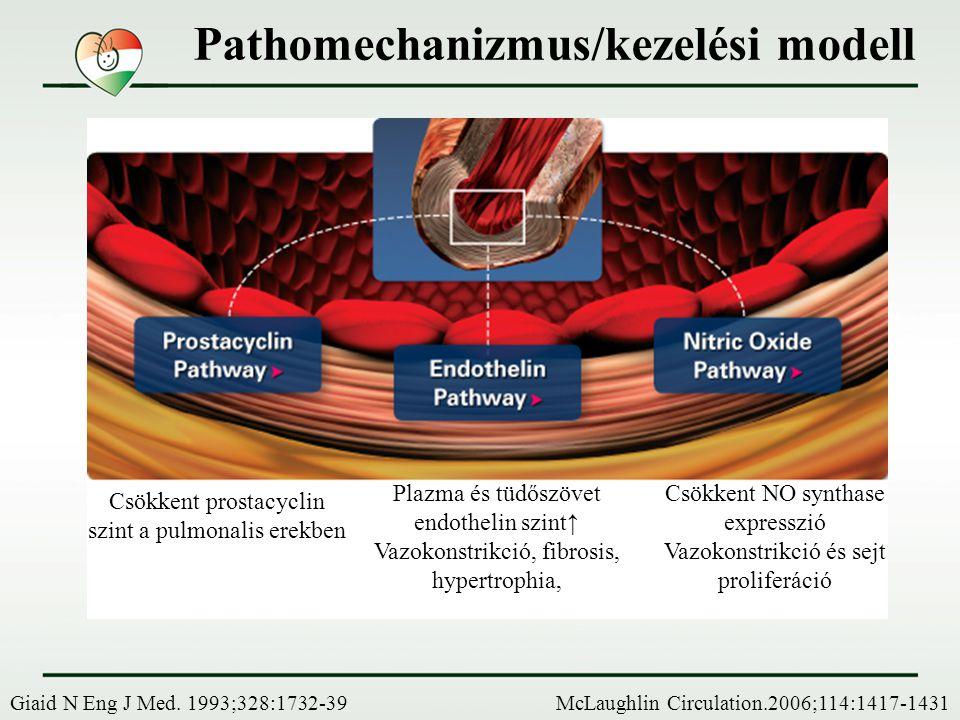 Diagnosztikus schema - PH NincsVan Nem Igen Nem Igen Nem Igen Nem McGoon, Chest, 2004; 126:14S-34S