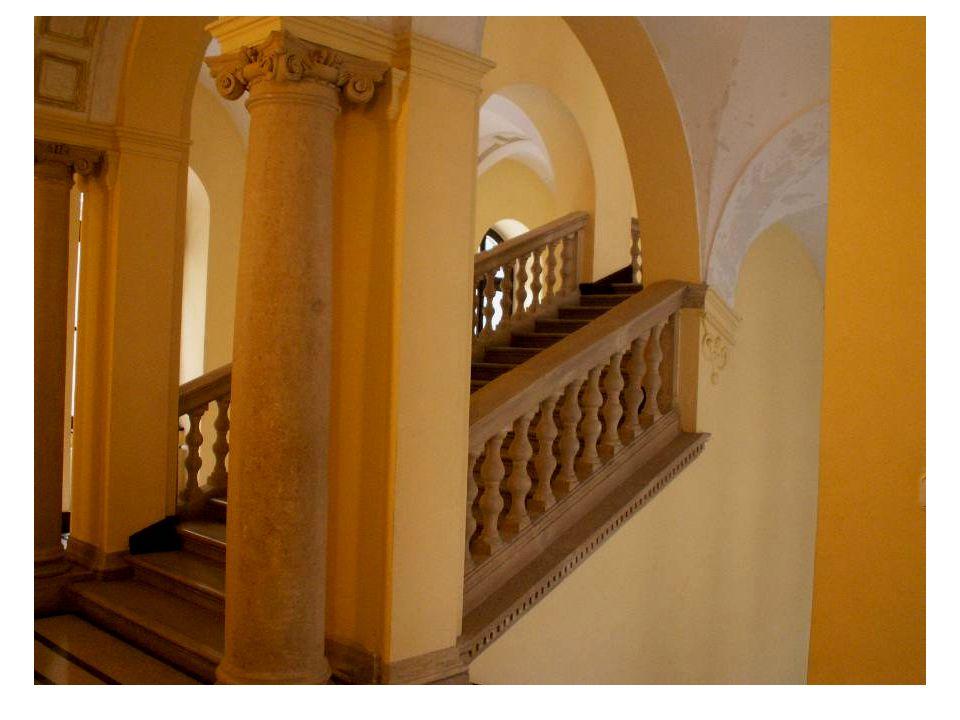 Az első emeleti folyosó, egykor az Állatrendszertani Tanszék működött ezen a helyen.