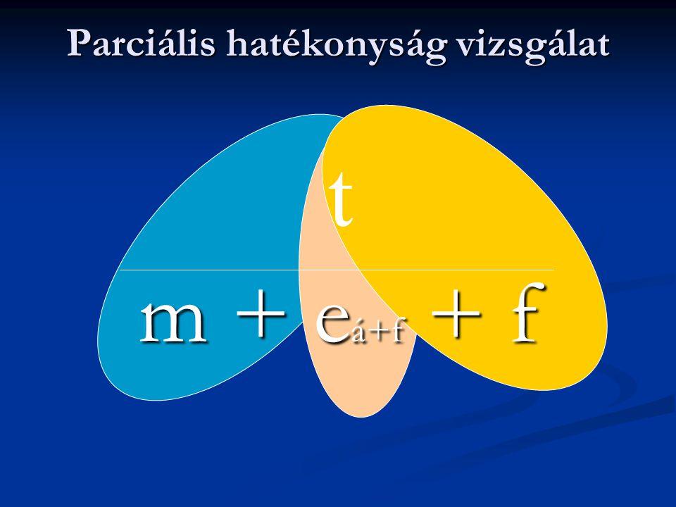 Parciális hatékonyság 1.
