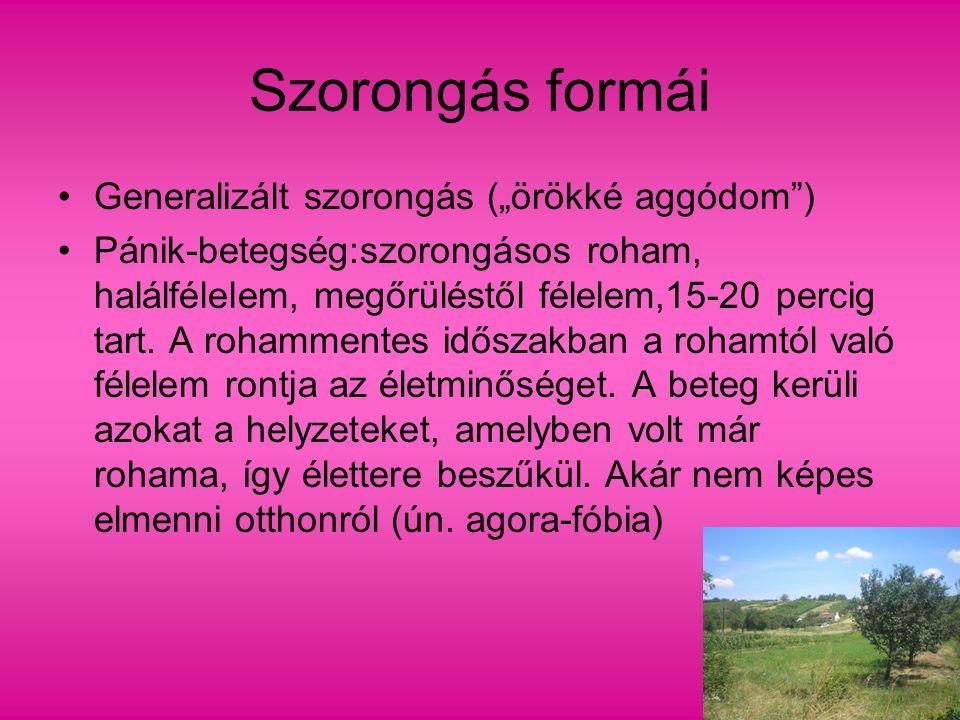 SZORONGÁS FORMÁI 2.