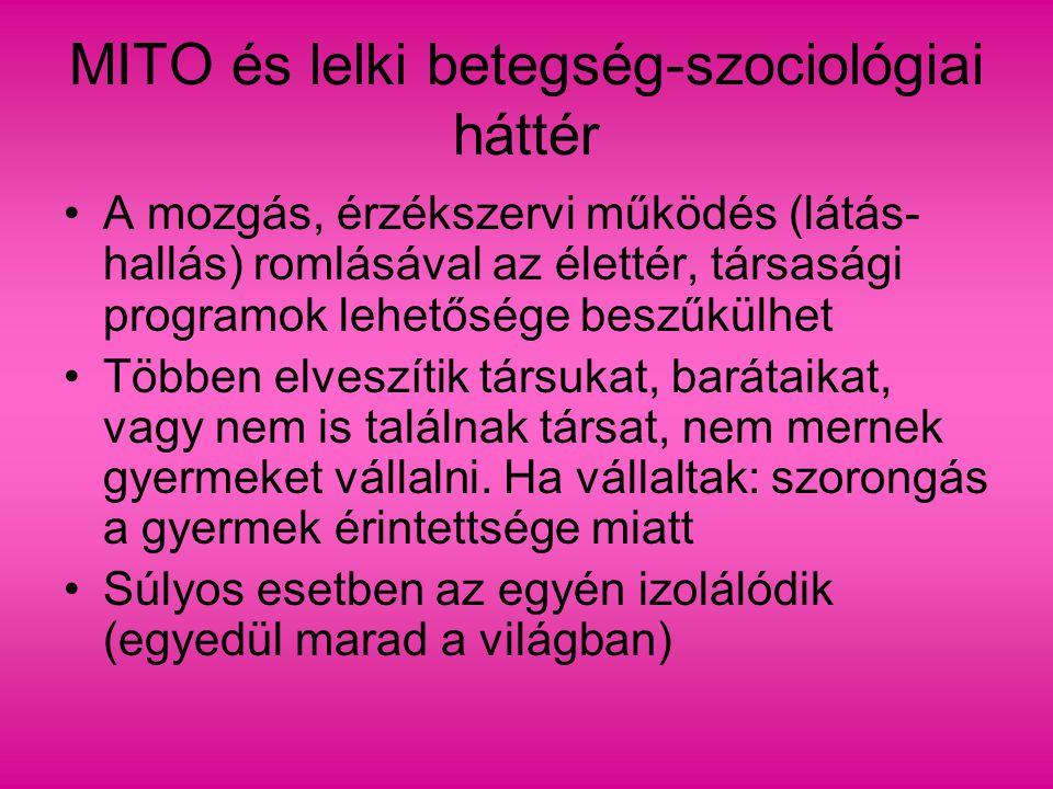 Szociológiai magyarázatok 2.
