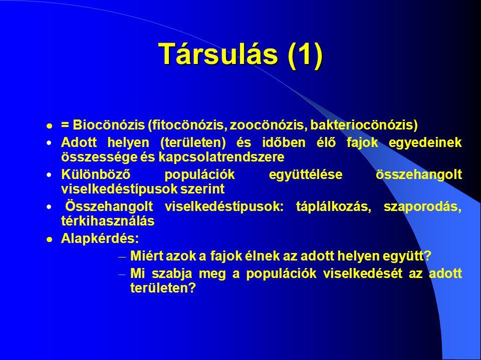 Társulás (2)  Alapvető információ: a társulás faji összetétele (fajlista)  Növényfajok listája = flóra  Állatfajok listája = fauna  baktériumok, gombák  Alapvető kapcsolatrendszerek:  Kompetíció (=versengés)  Forrásokért (táplálékért)  Élőhelyért  Trófikus kapcsolatok (mi mit eszik?)  Parazitizmus (=élősködés)  Biom: társulás-komplexek, egységes földrajzi életterek  Szárazföld: éghajlati övek által meghatározott zonobiomok  Összességük a bioszférát alkotja