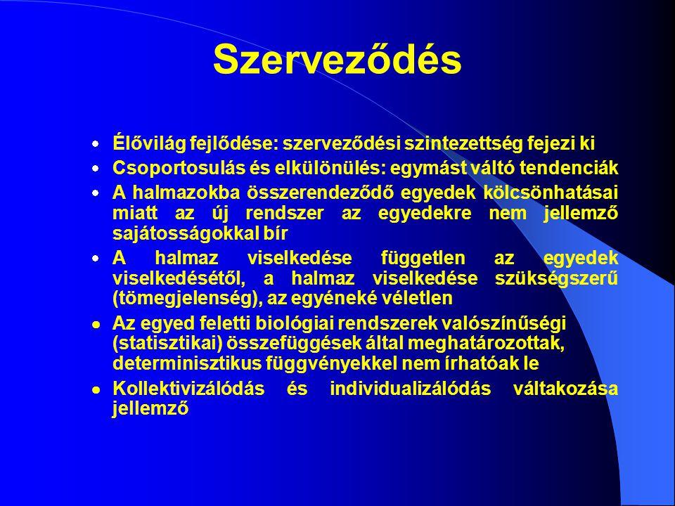 szervezet populáció társulás bioszféra molekuláris sejt szövet szerv INFRAINDIVIDUÁLIS INDIVIDUÁLIS (egysejtű, soksejtű) SZUPRAINDIVIDUÁLIS Szerveződési szintek  Biológiai rendszerek: élőlények közössége (nem elszigetelt egyedek)  Hierarchikusan egymásra épülő szerveződési szintek  A magasabb szintek részként mindig tartalmazzák az alacsonyabbakat  A magasabb szintek szerkezeti és működési komplexitása magasabb (sajátos törvényszerűségek)