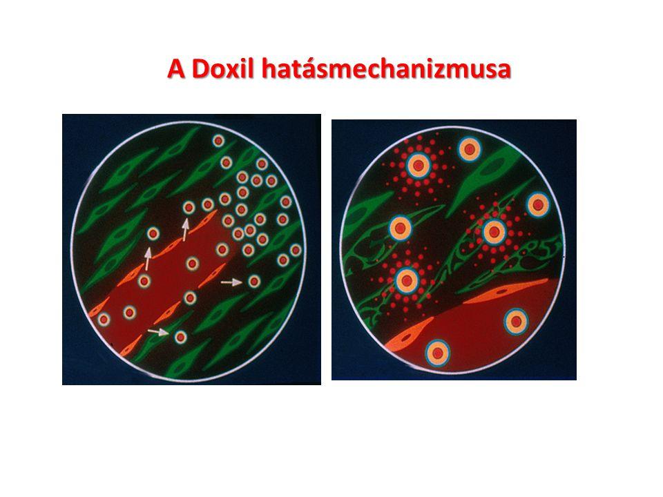 Doxil jelene és jövője Applications for pegylated liposomal doxorubicin (DOXIL®/Caelyx®) continue to expand.
