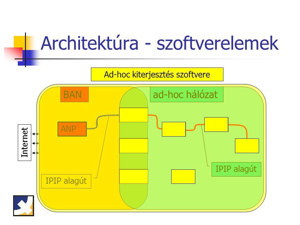 Megvalósítás során felmerült és megoldott problémák Eredeti BCMP: a BCMP üzenetek továbbítása adatkapcsolati szinten történik a BCMP kliens közvetlenül manipulálja a kernel útvonalválasztó tábláját Megoldásunk: BCMP kliens által felvett routing bejegyzések azonnali törlése MAC szinten elkaptuk és IP szinten újraküldtük a BCMP üzeneteket