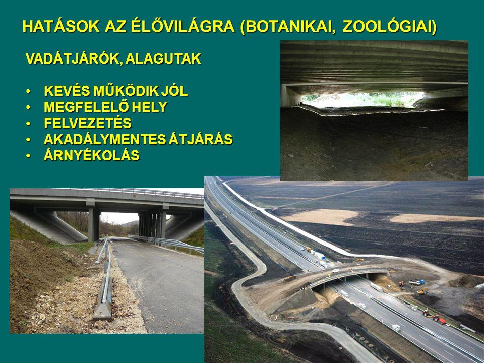 Kedvező kialakítás: ausztriai vadátjáró a Bécs felé vezető autópályán