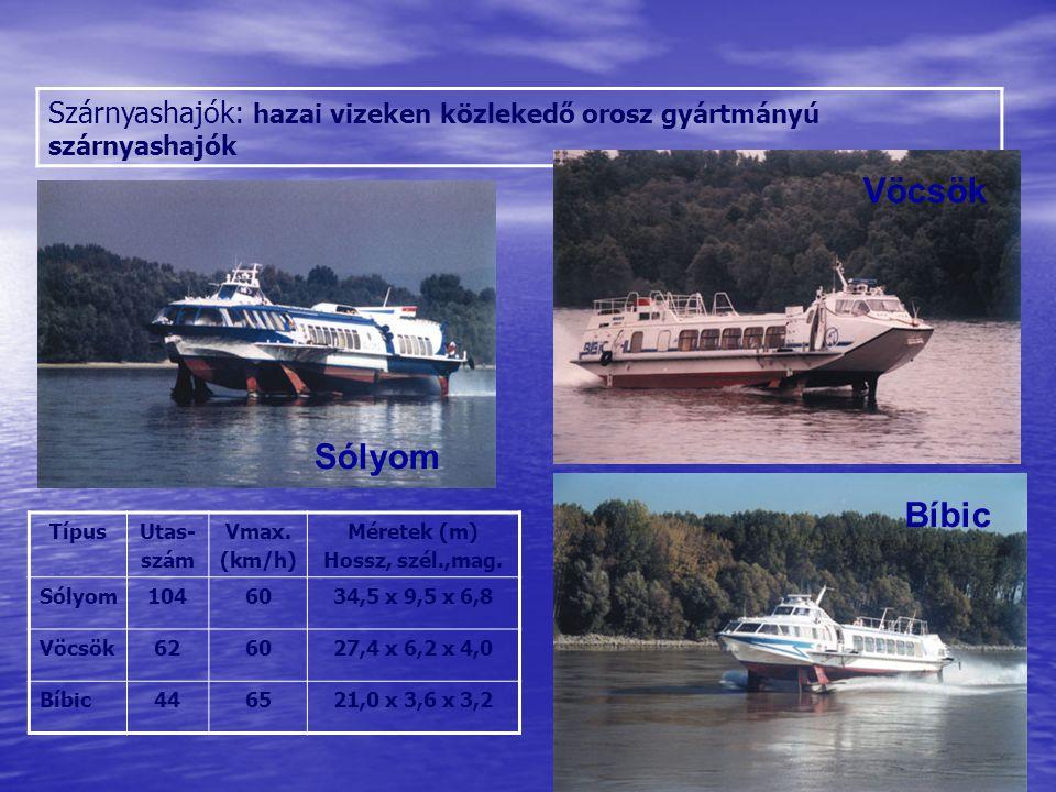 A világ legnagyobb szállítóeszközei: a Jahre Viking olaj tanker Sólyom Vöcsök Bíbic A világ legnagyobb olajszennyezései: 1.
