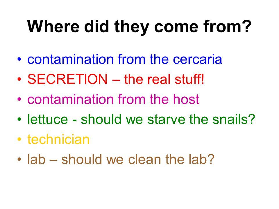Eddig csak kvali volt...Kvantitatív proteomika 1) a frakcionálás szintjén Pl.