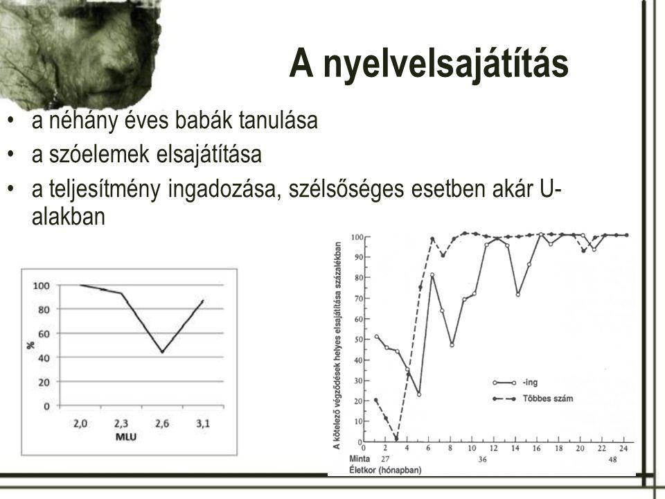 A nyelvelsajátítás a néhány éves babák tanulása a szóelemek elsajátítása a teljesítmény ingadozása, szélsőséges esetben akár U-alakban Berko (1958)