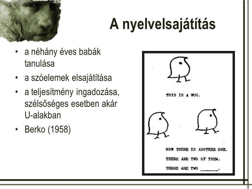 A nyelvelsajátítás a néhány éves babák tanulása a mondatok elsajátítása Pléh Csaba és munkatársai (2009)