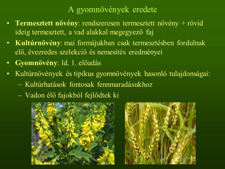 Kultúr-gyom komplexum: kultúrnövények + rokon gyomnövények –Kultúrnövények gyomokból fejlődtek ki: szekunder kultúrnövények –Gyomok kultúrnövényekből fejlődtek ki: szekunder gyomnövények –Gyomok és kultúrnövények ± egyidejűleg, ugyanazon vadon élő növényi populációból fejlődtek ki Domesztikáció: –Evolúciós folyamtok eredményei –A domesztikált növények bélyegei hasonlók Domesztikációs jellemvonások: –Természetes terjedőképesség elvesztése –A magok egyöntetű és gyors csírázása –Nagyobb diaspórák –Egyidejű érés –Mechanikai védekező rendszer elhagyása –Toxikus és keserűanyagok elvesztése –Változások a termések és magvak színében