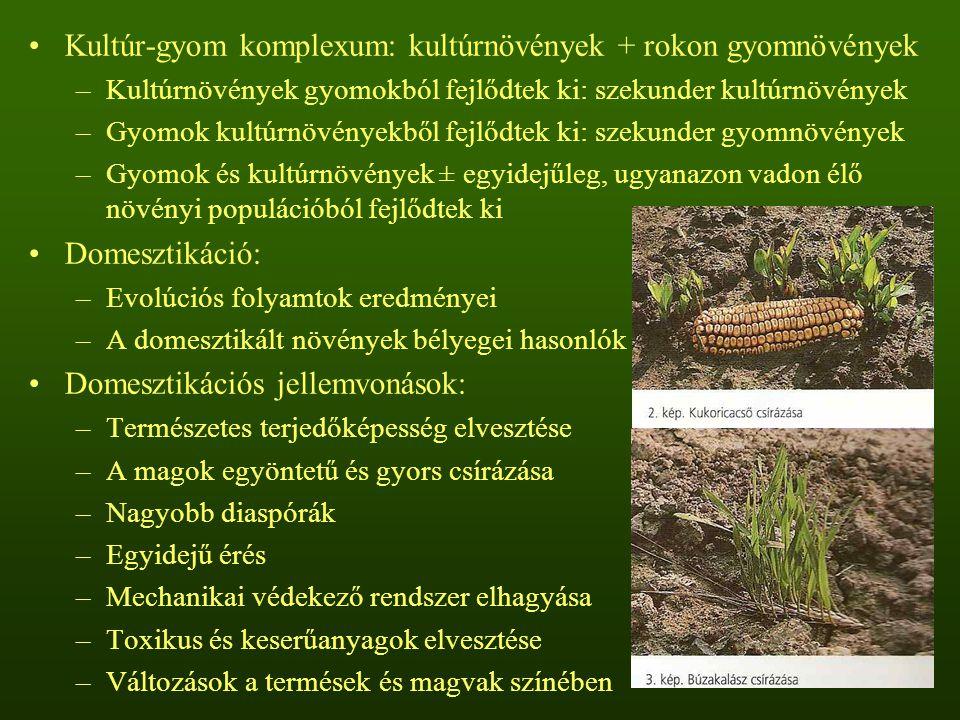 Domesztikálás alapfeltétele: megfelelő vad formák jelenléte –Alakor (Triticum monococcum), árpa (Hordeum vulgare), zab (Avena sativa), borsó (Pisum sativum), vadlencse (Lens nigricans var.