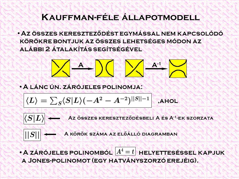 Példa A Hopf-lánc kiszámítása A2A2 A-2A-2 AA -1 =1 2211