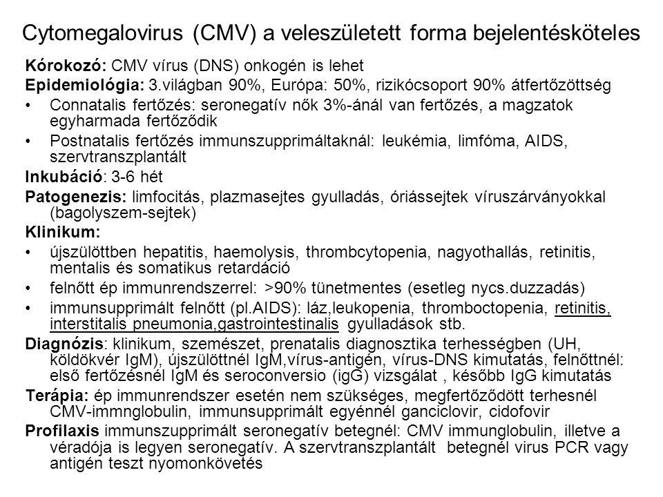 Hasmenéses fertőző betegségek kórokozói (bejelentésköteles a gyanú, a megbetegedés, a haláleset és a kórokozóürítő) Bacteriumok és toxinok Salmonellák Escherichia coli –Enteropathogén (csecsemők hasmenése) –Enterotoxin képző (utazók hasmenése) –Enteroinvazív (dysenteria-szerű) (állatokról kerül emberre) Campylobacter jejuni Yersinia enterocolica (appendicitis-szerű +arthralgia, erythema nodosum Clostridium difficile (pseudomembranosus colitis antibiotikus kezelés után) (de minden más bacterium–toxin is okozhat hasmenést (AIDS esetén sokfajta kórokozó: cryptosporidium, microsprodium, CMV, mycobbacterium) Shigellák Vibrio chiolerae Vírusok (Rotavirus gyermekeknél, Norwalk-virus utazóknál Protozoonok: Giardia lamblia, Entamoeba histolytica – trópusór hazatérőknél) Gombák: Candida, Aspergillus