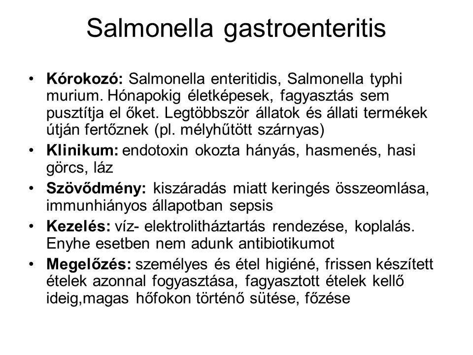 Endotoxin ételmérgezés = nem fertőzés.