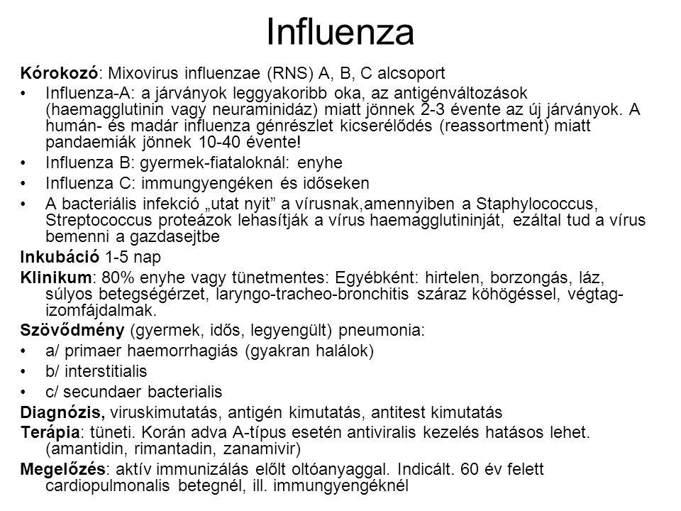 Parotitis epidemica – mumps fültőmirigy gyulladás Kórokozó: Paramyxovirus parotidis Epidemiológia: 4-15 év között a népesség 90%-a életre szóló immunitással védett.
