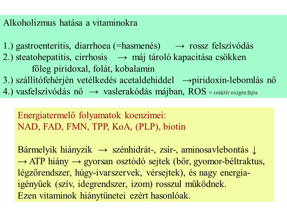 Aminosav- és nukleotidanyagcserében részt vevő vitaminok: piridoxin, folát, kobalamin Hiányukban az aminosavak metabolizmusa, a nukleotidok szintézise, ezért a nukleinsavak (DNS, RNS) szintézise is sérül.