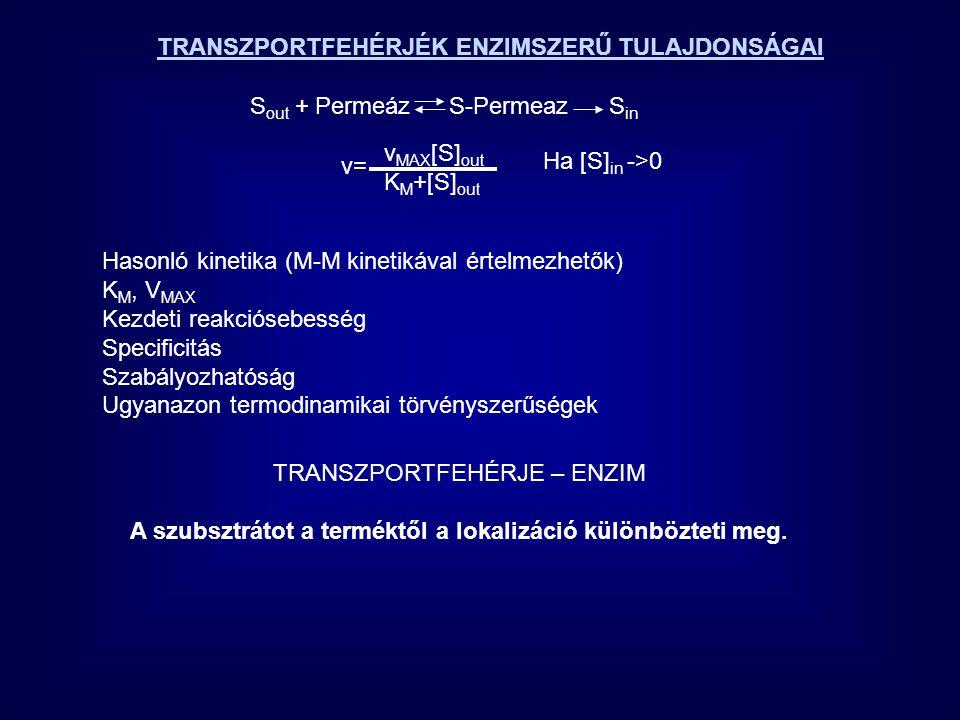 AKTÍV TRANSZPORT permeáz Pl Ca2+ pumpa vvt-ben Ca 2+ out Ca 2+ in =10 4 Spontán nem megy végbe, ha A out ------------  A in reakcióban  G>0, Egy nagyobb  G csökkenéssel járó folyamat kapcsolódását igényli Ca 2+ ATPADP + P i Ca 2+ ATP-ase Ca transzport az IC térből az EC térbe