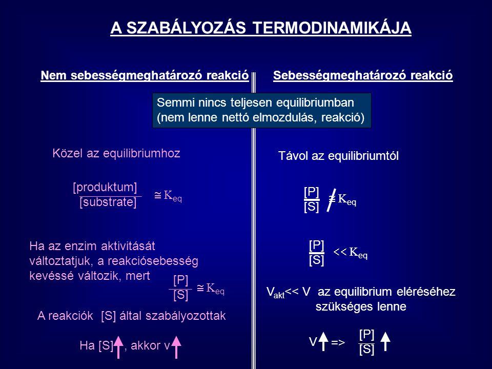 Nem sebességmeghatározó reakcióSebességmeghatározó reakció [S] 1 [S] 2 v [S] v Ha az enzim aktivitását Változtatjuk, a reakciósebesség Kevéssé változik, mert [P][S][P][S]  K eq A reakciók [S] által szabályozottak Ha [S], akkor v V akt << V az equilibrium eléréséhez szükséges akt=> [P] [S]