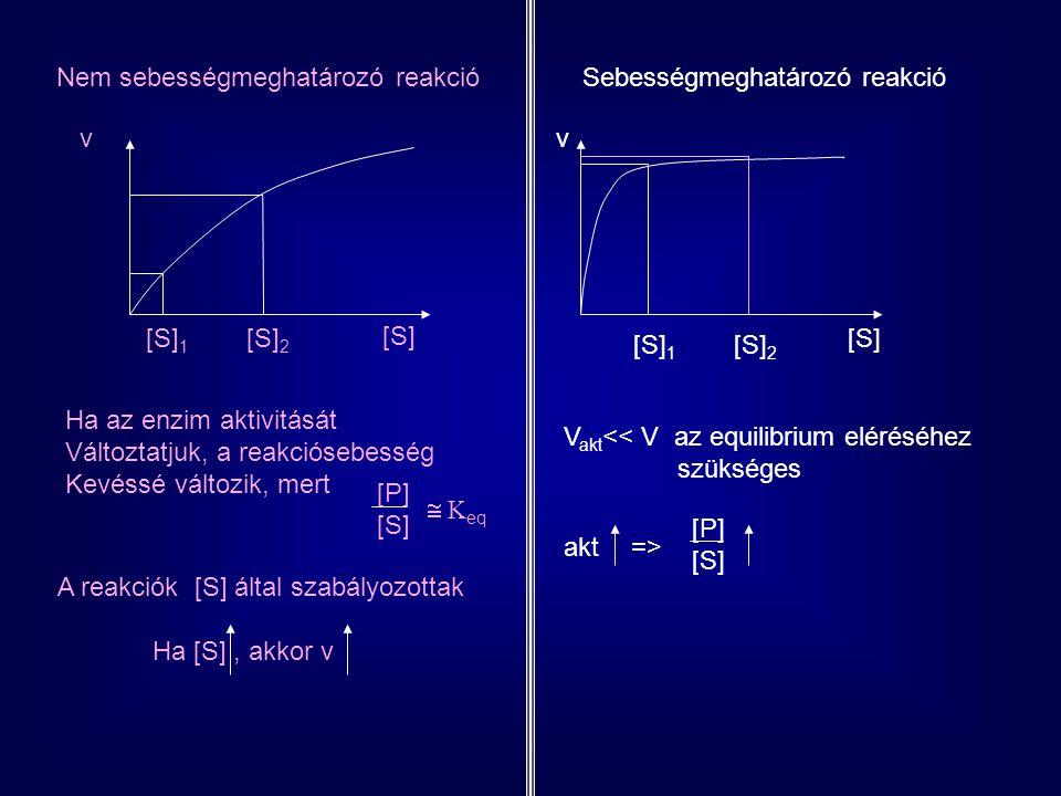 ABC ENZIM 1 ENZIM 2 Szubsztrát TERMÉK SZUBSZTRÁT TERMÉK [B] befolyásolja a további reakció sebességét befolyásolja a reakcióút sebességét A B átalakulásMessze az equilibriumtóll V  V MAX  v AZ ENZIM AKTIVITÁSA A REGULÁTOROKON MÚLIK