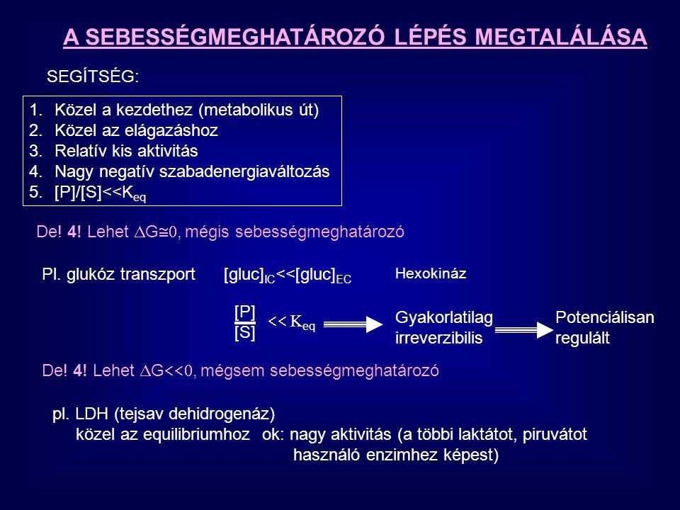 A SEBESSÉGMEGHATÁROZÓ LÉPÉS MEGTALÁLÁSA Két faktor az irreverzibilitáshoz -  G o <<0 -alacsony aktivitás a többi enzimhez képest lehet szabályozott, de nem szükségszerűen az BIZONYÍTÁS vagy KIZÁRÁS -- KÍSÉRLET [metabolit] a nem stimulált reakció aktivitásának %-ában [P] [S]  K eq A B C D E F G stimulált gátolt [D]/[C]<<K eq Bizonyítás: [D]/[C] arány változik, ha az út aktivitása változik kontroll