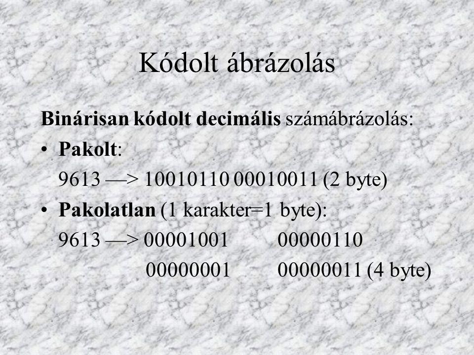 Nem-numerikus karakterek: A gyakorlatban legelterjedtebb a kiterjesztett ASCII (American Standard Code for Information Interchange) kód használata.
