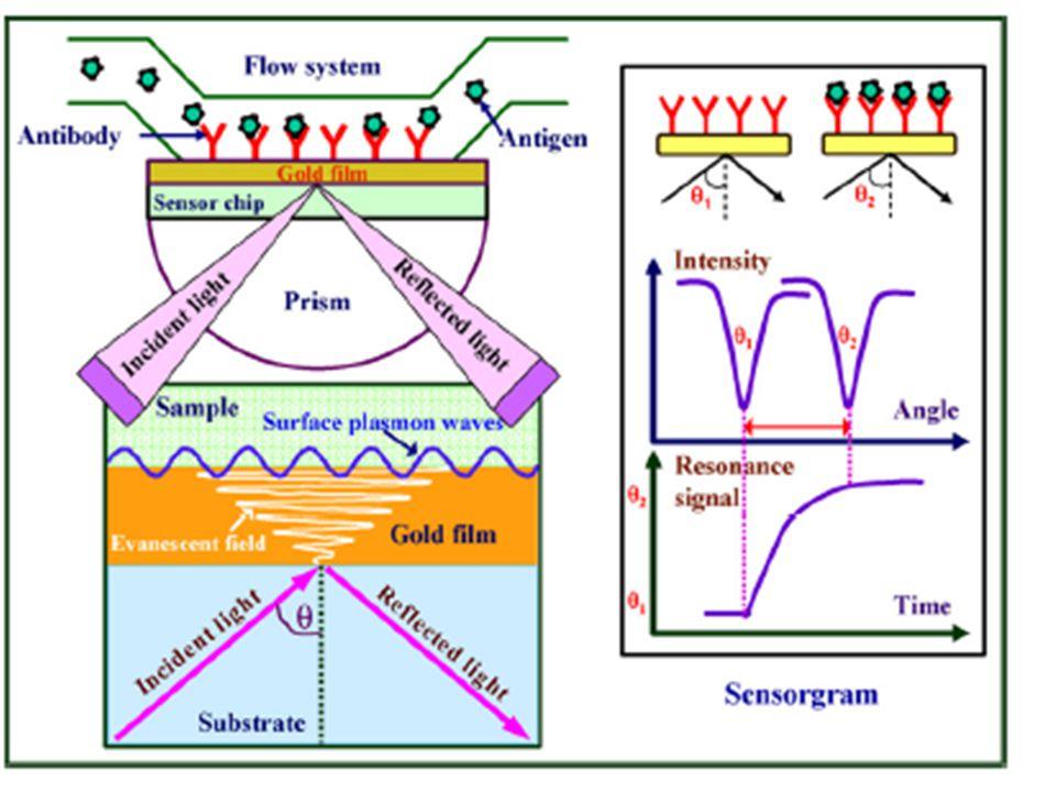 Rezonancia feltétele -a gerjesztő fény impulzusának felülettel párhuzamos komponense meg kell egyezzen az azonos energiájú felületi plazmon impulzusával -a gerjesztés a fény egy adott beesési szögénél történik meg és ilyenkor a fém felületről visszavert fény intenzitásában egy minimum észlelhető (abszorpció!).