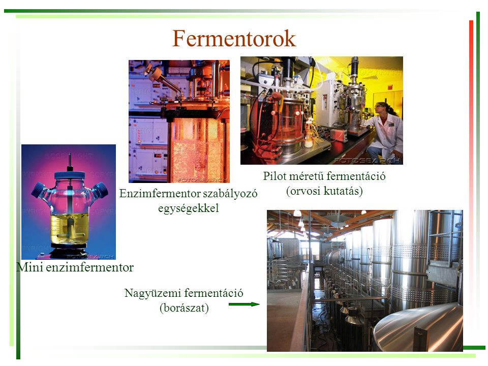 Fermentációs tápoldatok C-forrás + N-forrás + O 2 + ásványi sók + speciális tápanyagok (pl.