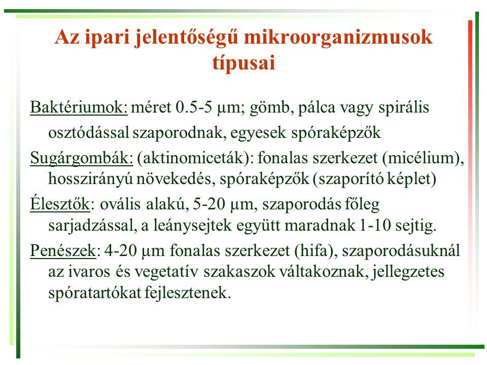 Az ipari jelentőségű mikroorganizmusok típusai Saccharomyces Schizosaccharomyces ellipsoideusoctosporus Aspergillus nigerPenicillium glaucum A baktériumok gyakori morfológiai típusai Gombák