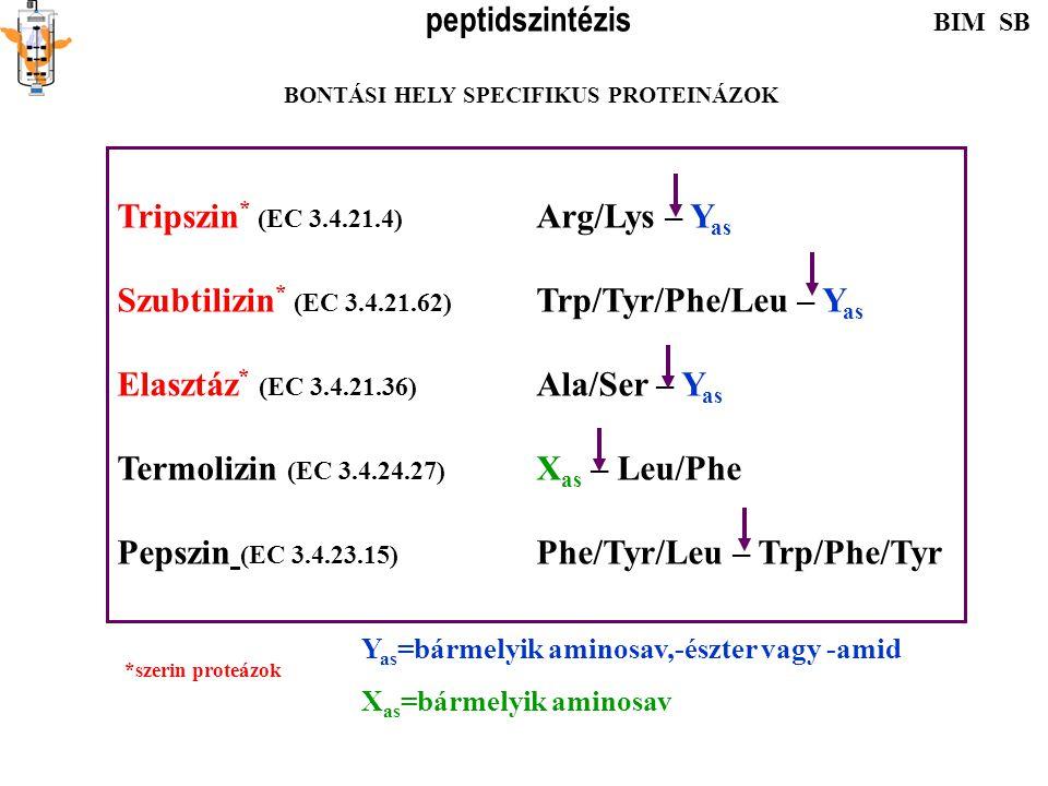 CH 3 -CO-NH-CH-COOH R CH-O-CO-NH-CH-COOH R H 2 N-CH-CO-NH 2 R H 2 N-CH-CO-O-CH 3 R Benziloxikarbonil- (Z) Acetil- (Ac) Amid- Észter: -OCH 3, -OCH 2 CH 3 … -NH 2 védelme -COOH védelme Reagáló aminosavak védelme Ez aktiválja is a karboxil csoportot Melléktermékek elkerülésére csoport védelelm