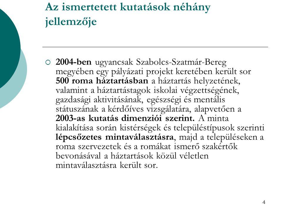 5 Az ismertetett kutatások néhány jellemzője  2004, Tiszavasvári,a Szocio–East Egyesület által koordinált vizsgálat.