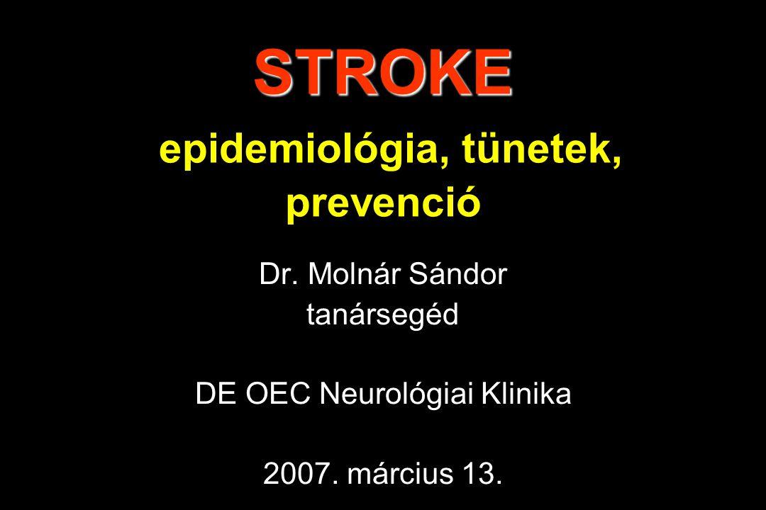 A STROKE Gutaütés Szélütés Agyérgörcs Lebénulás Agyvérzés Agyi érkatasztrófa