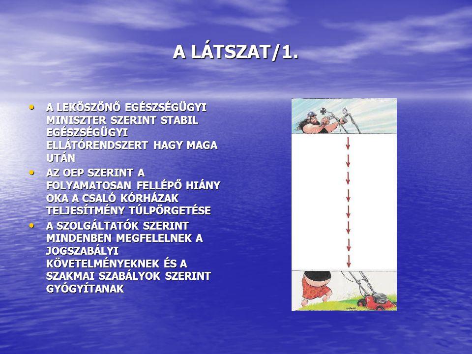 A LÁTSZAT/2.