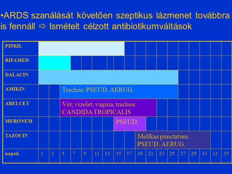 Jobb o. több (3) intrapul- monalis abscessus