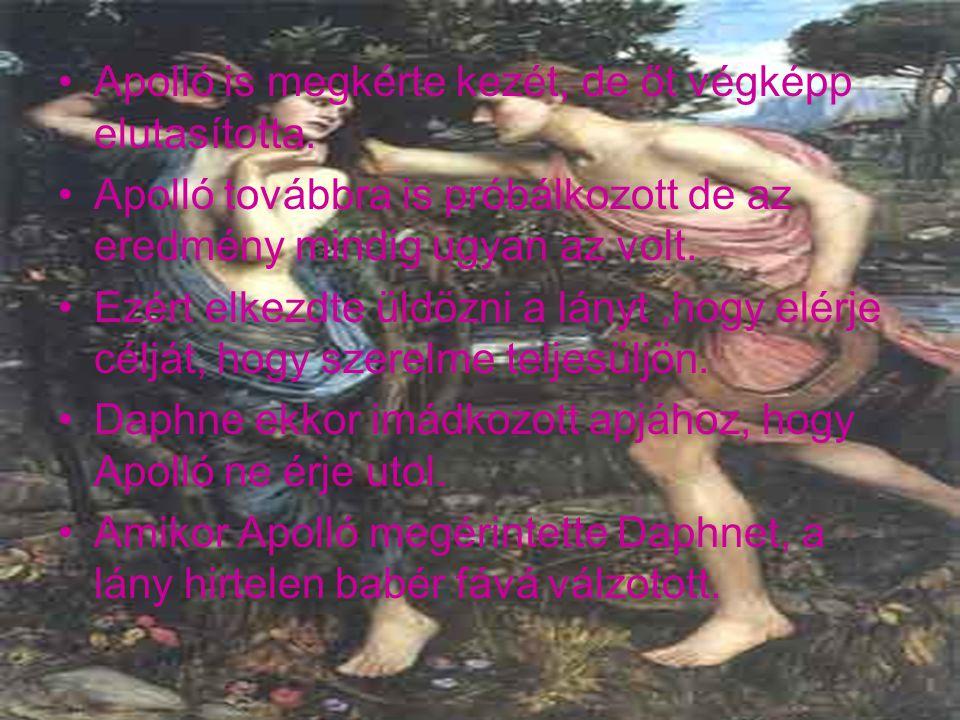 Így becsületén nem esett csorba. Ezután a babérfát, Apolló SZENT ként tisztelte.
