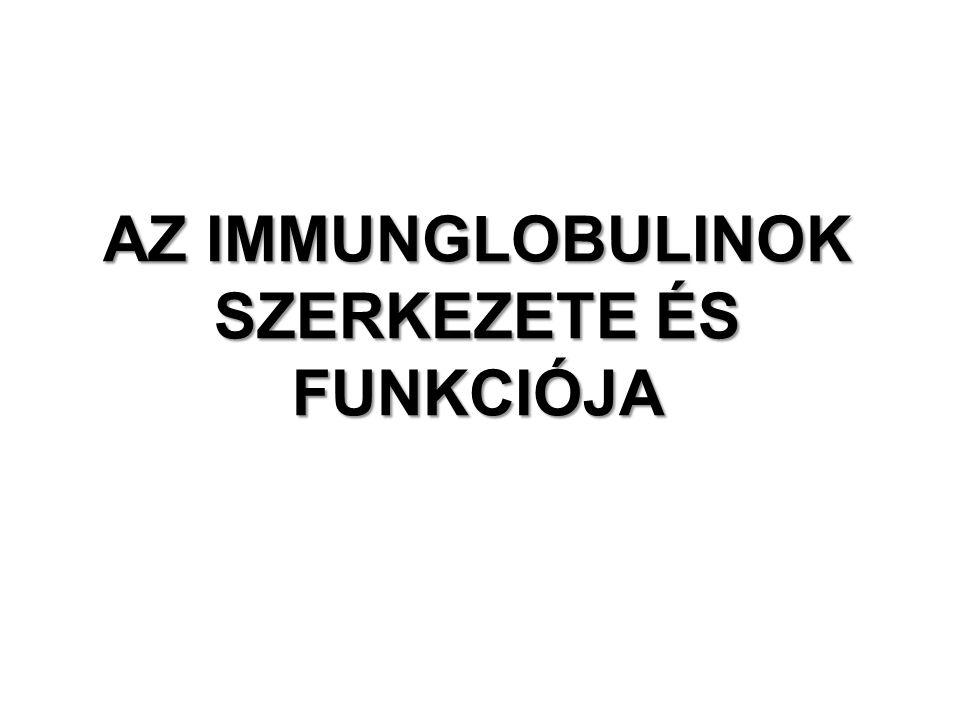 IMMUNGLOBULINOK Definíció B-sejtek felszínén megjelenő, illetve egy immunogénre válaszoló plazmasejtek által termelt glikoproteinek.