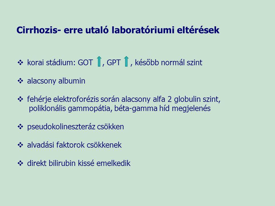 Icterusok differenciálása Szérum összbilirubin Szérum indirekt bilirubin Szérum direkt bilirubin Vizelet bilirubin Vizelet UBG Prehepaticus icterus N - N Parenchymás icterus Posthepaticus icterus