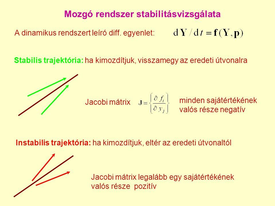 A hidrogén-levegő adiabatikus robbanás dimenziója pozitív Jacobi sajátértékek n a változók száma a modellben n c a megőrzött tulajdonságok száma = a Jacobi nulla sajátértékeinek száma n r a relaxált módusok száma Pillanatnyi dinamikus dimenzió: n D =n  n c  n r.